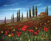 Bright Tuscan Poppy Field